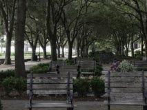 Nabrzeże park Charleston Południowa Karolina Zdjęcie Royalty Free
