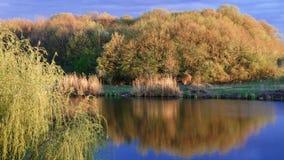 Nabrzeże w wiośnie, Corbeance, Ilfov okręg administracyjny, Rumunia zdjęcie royalty free
