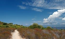 Nabrzeżna ścieżka w Corsica wyspie Fotografia Royalty Free