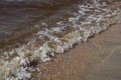 Nabrzeżne morze fala Seawater z gałęzatką Nabrzeżne algi plażowy footpath mola morze Brown woda Morze jest brown Obrazy Royalty Free