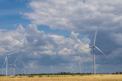 Nabrzeżny wiatrowy gospodarstwo rolne po środku pszenicznego pola, Botievo, Ukraina Zdjęcia Stock