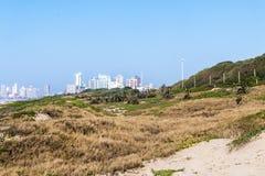 Nabrzeżny Wydmowy roślinność agains niebieskie niebo i miasto linia horyzontu Obrazy Royalty Free