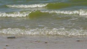 Nabrzeżne Azov morza fala zbiory wideo