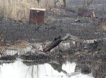 Nach dem Feuer die Bank des Stromes bedeckt mit Asche Stockbild