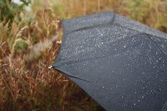 Nach dem Regen Stockbild