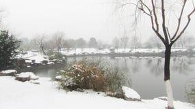 Nach dem Schnee Stockfotografie