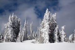 Nach dem Schnee-Sturm Stockbilder