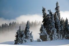 Nach dem Winter-Sturm Lizenzfreie Stockfotografie
