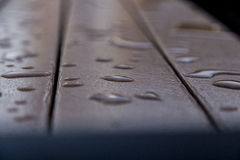 Nach Regen Lizenzfreie Stockbilder