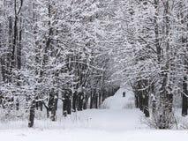 Nach Schneefälle in einem verlassenen Park Stockfotografie