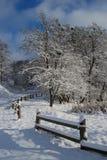 Nach Schneefällen Stockfotografie