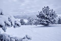 Nach Schneesturm Stockfoto