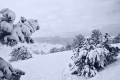 Nach Schneesturm a Lizenzfreie Stockfotos