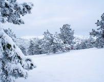 Nach Schneesturm g Lizenzfreie Stockbilder