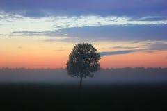 Nach Sonnenuntergang lizenzfreie stockfotos