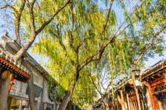 Nachbarschafts-Restaurant-Shops Willow Trees Beijing Yuer Hutong stockfotos