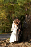 Nachdem wedding Stockbilder