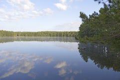 Nachdenken über Natur 2 Stockfoto