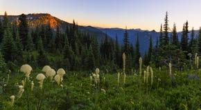 Naches Peak Loop Trail in Mt Rainier NP Stock Photography