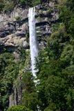 Nachi Falls nel Giappone Fotografia Stock Libera da Diritti
