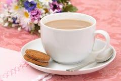 Nachmittags-Tee u. Biskuite lizenzfreie stockbilder