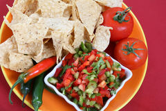 Nacho Chips. On a plate with salsa and vegetables Royalty Free Stock Photos