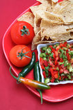Nacho chips. On a plate with salsa and vegetables Royalty Free Stock Photo