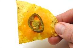 nacho simple photographie stock libre de droits