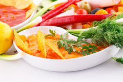 Nachos, cheese and red sauce,  vegetables Royalty Free Stock Photography
