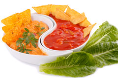 Nachos, cheese and red sauce,  vegetables Royalty Free Stock Image