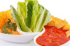 Nachos, cheese and red sauce,  vegetables Stock Images