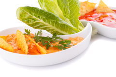 Nachos, cheese and red sauce,  vegetables Royalty Free Stock Photos