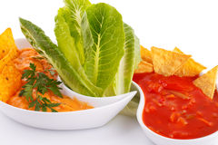 Nachos, cheese and red sauce,  vegetables Stock Photography