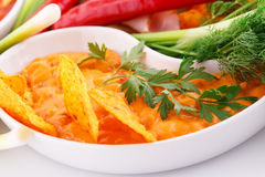 Nachos, cheese sauce,  vegetables Royalty Free Stock Images