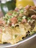 Nachos with cheese and vegetable Royalty Free Stock Photography