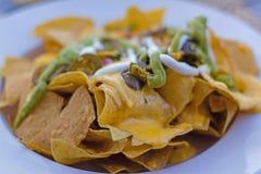 nachos Platta matställe royaltyfri bild