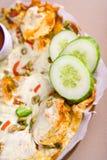 Nachos and salsa. Big nachos and salsa sauce Stock Image