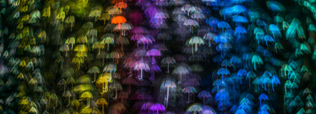 Nacht beleuchtet bokeh Regenschirmform, defocused bokeh Lichter, blurr Lizenzfreies Stockbild