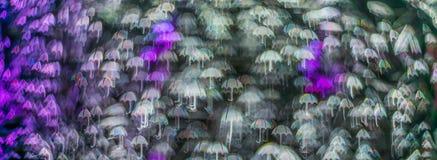 Nacht beleuchtet bokeh Regenschirmform, defocused bokeh Lichter, blurr Stockbilder