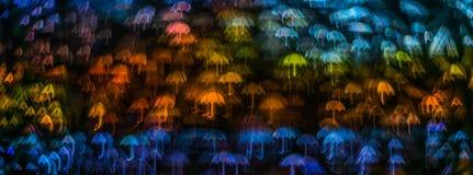 Nacht beleuchtet bokeh Regenschirmform, defocused bokeh Lichter, blurr Stockfotografie