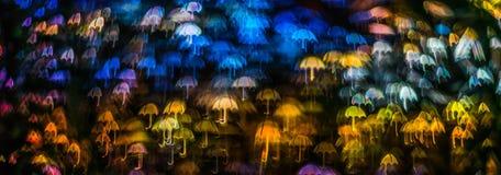 Nacht beleuchtet bokeh Regenschirmform, defocused bokeh Lichter, blurr Stockfoto