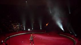 Nacht bij het Circus stock footage