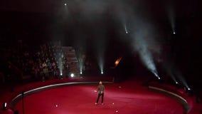 Nacht bij het Circus stock video