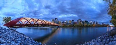 Nacht Calgary royalty-vrije stock foto's