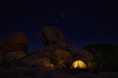 Nacht die in Joshua Tree National Park kamperen Royalty-vrije Stock Afbeelding