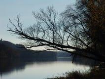 Nacht door de rivier Stock Foto's