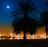 Nacht in Doubai Stock Afbeeldingen