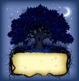 Nacht eiken boom met een banner Royalty-vrije Stock Afbeeldingen