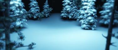 Nacht in einem Wald Lizenzfreies Stockbild