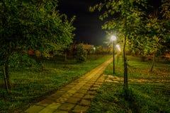 Nacht en lantaarns Stock Afbeeldingen